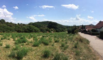 Grundstücke in ausgezeichneter Lage