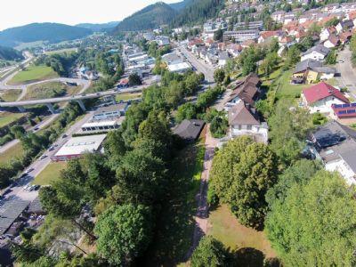 Grundstück in Bestlage Titisee - Neustadt ( Neustadt )