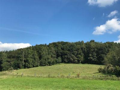Gerolsbach - Ortsrand Freizeitgrundstück - Wiese/Wald zu verkaufen