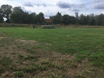 Lüchow Grundstücke, Lüchow Grundstück kaufen