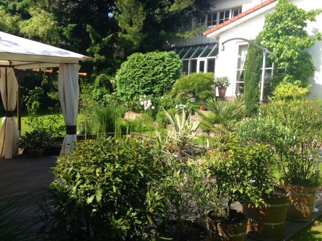 Genießen Sie den Frühling zum reduzierten Preis: Villa in ruhiger Wohnlage in Hofheim-Rosenberg!