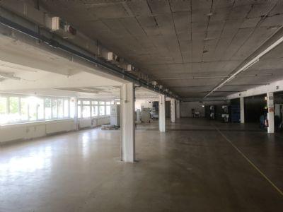 Donaueschingen Halle, Donaueschingen Hallenfläche