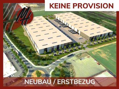 Mainz Halle, Mainz Hallenfläche