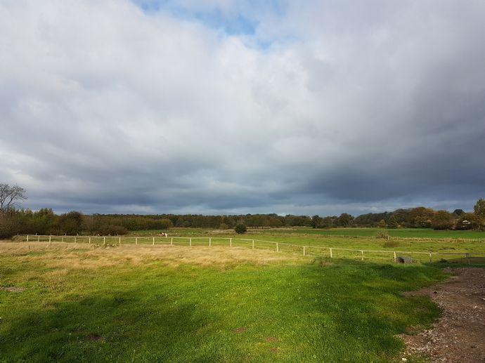 Baugrundstück für ein Einfamilienhaus mit Feldrandlage angrenzend an Naturschutzgebiet von Privat