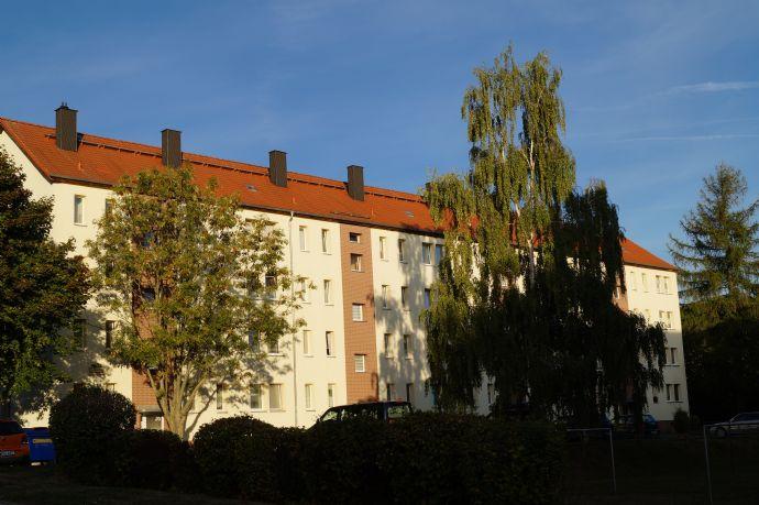 Single-Wohnung in ruhiger Lage