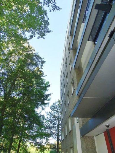 ° ° ° Charmante, modernisierte 2-Zim.-Wohnung unweit von der UNIVERSITÄT Kassel ° ° °