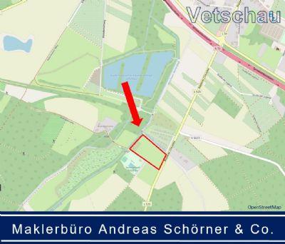 Vetschau/Spreewald Bauernhöfe, Landwirtschaft, Vetschau/Spreewald Forstwirtschaft