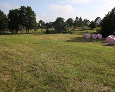 Benz Bauernhöfe, Landwirtschaft, Benz Forstwirtschaft