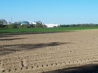Erding Bauernhöfe, Landwirtschaft, Erding Forstwirtschaft