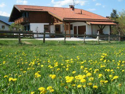 Gemütliche u, komfortable FeWo, 2-4 Pers. 89qm, Terrasse u. Garten, W-lan kostenlos, KönigsCard