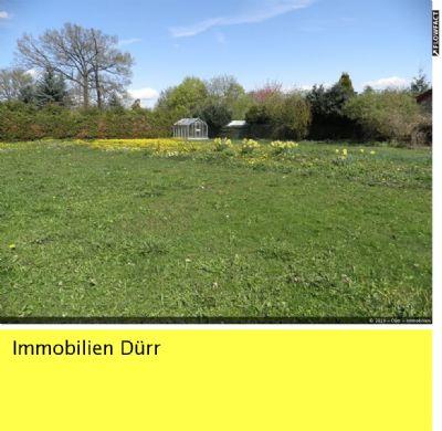 großes Gartengrundstück mit kleiner Hütte und Gewächshaus