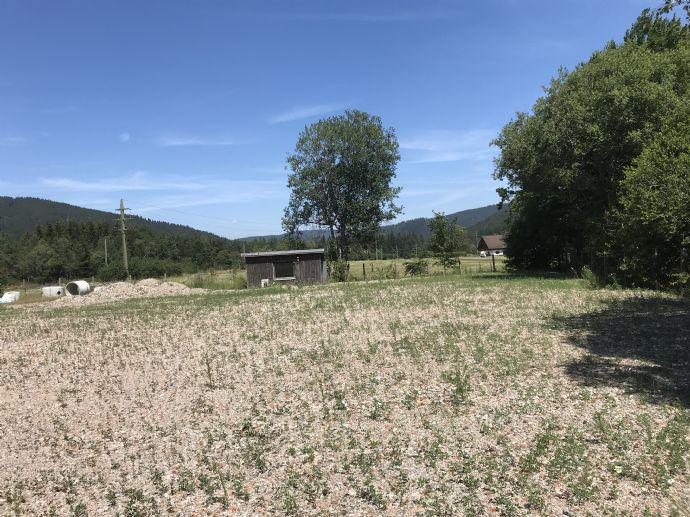 Kleiner Gewerbepark in Titisee-Neustadt - OT Titisee