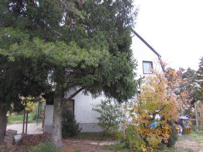 Falkensee Häuser, Falkensee Haus kaufen