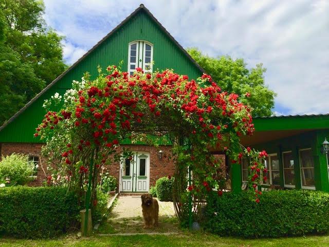 Landhaus in ruhiger Alleinlage, hochwertige, individuelle Gestaltung, Pavillon, Scheune