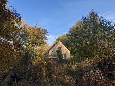Wermsdorf Grundstücke, Wermsdorf Grundstück kaufen