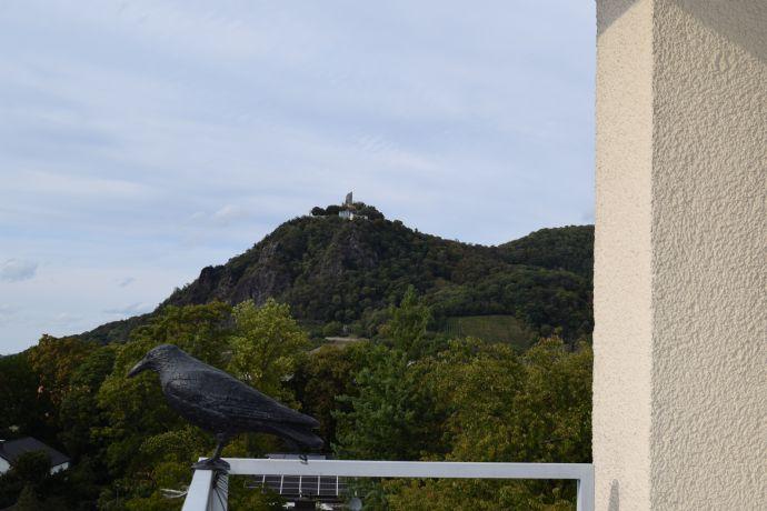 Großzügige und vollmöblierte, ruhige 2 Zimmerwohnung mit Weitblick Rheinpanorama & Drachenfels, Bad, Balkon, Aufzug,
