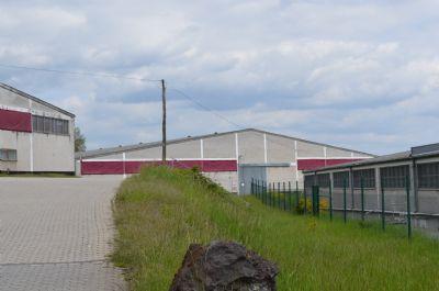 Andernach  Halle, Andernach  Hallenfläche