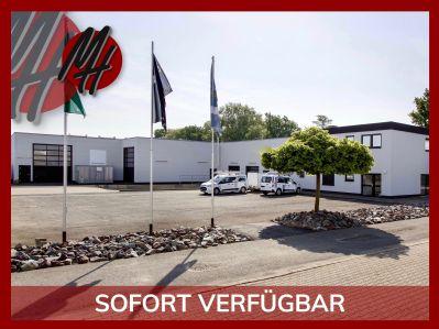 Limburg Halle, Limburg Hallenfläche