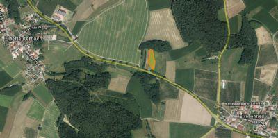 Gerolsbach Bauernhöfe, Landwirtschaft, Gerolsbach Forstwirtschaft