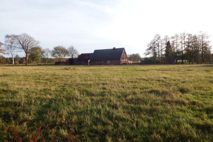 21789 Wingst/ Nähe Cadenberge: Bauernhaus + Nebeng./ ca. 7,1 ha