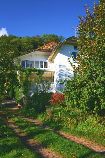 Zweifamilienhaus in Südhanglage, Natur pur