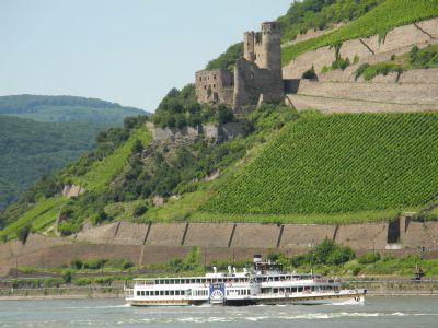 Bingen am Rhein Wohnungen, Bingen am Rhein Wohnung kaufen