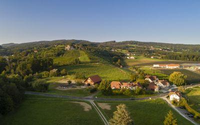 Stubenberg Bauernhöfe, Landwirtschaft, Stubenberg Forstwirtschaft