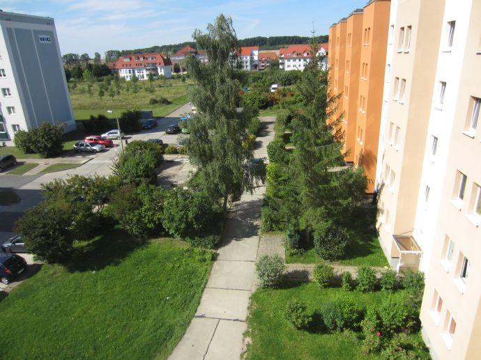 Helle 3- Raum Wohnung mit Harzblick