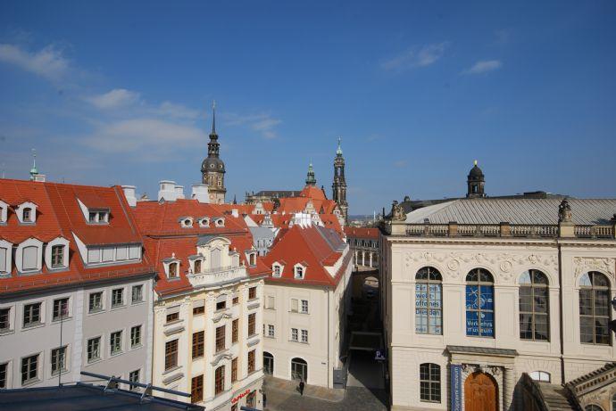 einzigartige Wohnung mitten in Dresden mit großer Terrasse