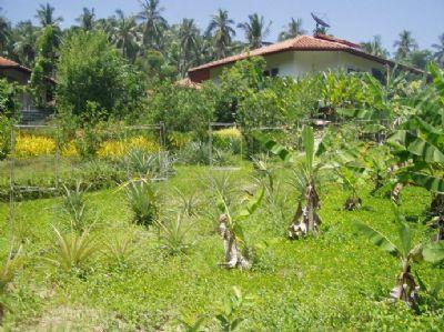 Thailand Häuser, Thailand Haus kaufen