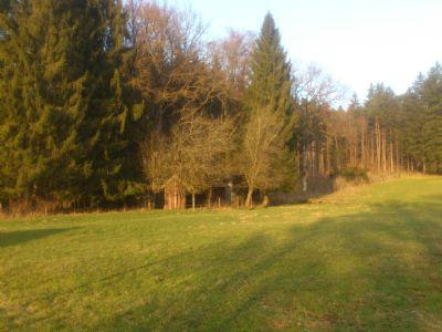 Geretsried Bauernhöfe, Landwirtschaft, Geretsried Forstwirtschaft