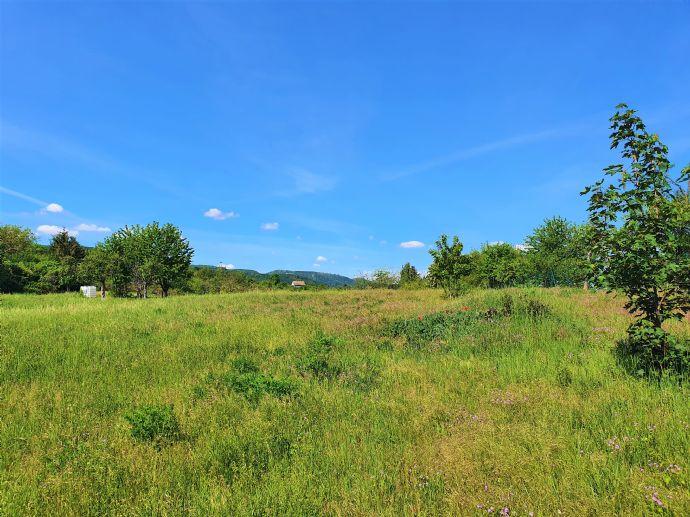 Hier könnte Ihr Traumhaus stehen â Sagenhaft schönes Grundstück im Harz