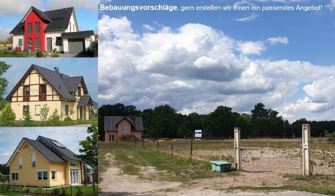 Großes Baugrundstück am Ortsrand von Eichow - Nähe Vetschau