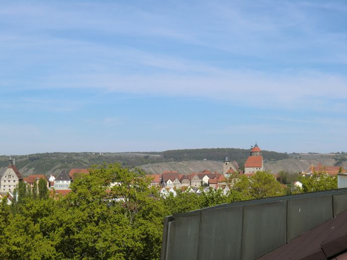 Renovierte 3,5-Zimmer-Wohnung mit Balkon und EBK in Besigheim