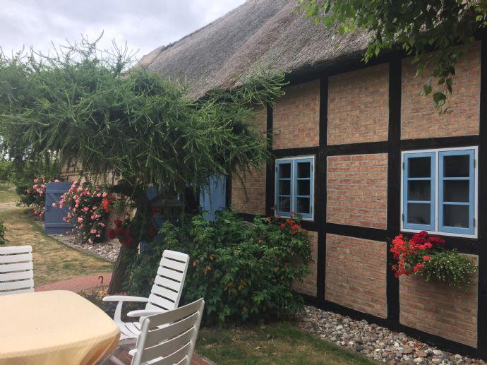Neuer Preis !! Ehemaliges Bauernhaus mit Reetdach auf großzügigem Grundstück in TOP -Zustand und Wassernähe auf USEDOM !!