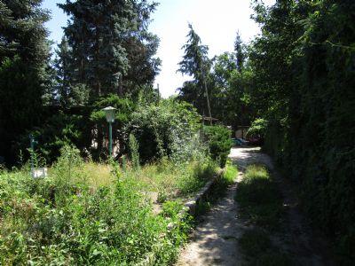 Pankow-Rosenthal- Baugrundstück - 536 m² - ruhige grüne Lage