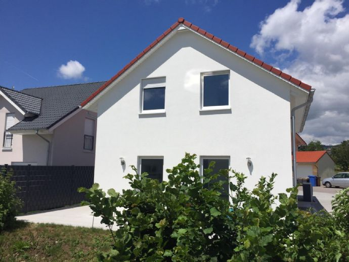 KFW 55; BJ 2017 Laufenburg Rhina