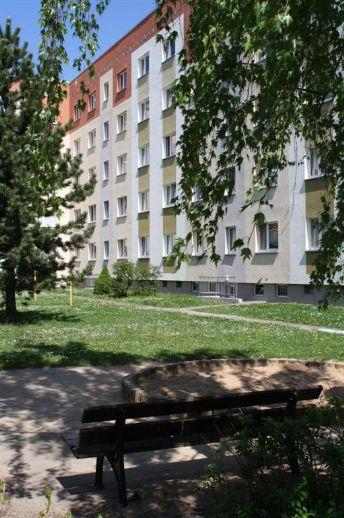 3-Raum-Wohnung für junge Familie
