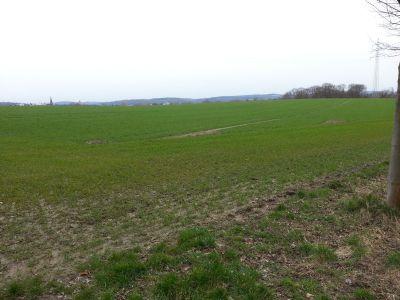 Witten Bauernhöfe, Landwirtschaft, Witten Forstwirtschaft