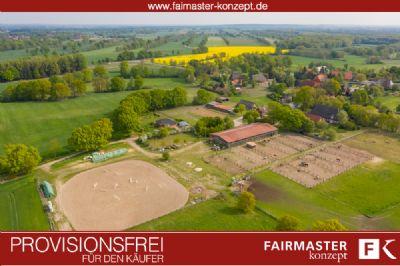 Lüdersburg Bauernhöfe, Landwirtschaft, Lüdersburg Forstwirtschaft