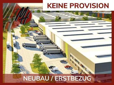 Bensheim Halle, Bensheim Hallenfläche