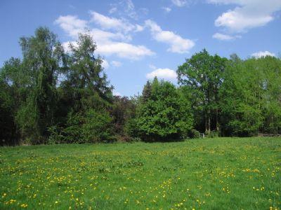 39 m breites Villen-Baugrundstück in S/W-Ausrichtung in bevorzugter Sackgassenlage von Ohlstedt...