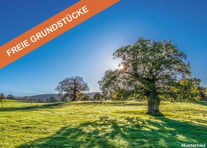 Bauträgerfreies Grundstück in Hecklingen
