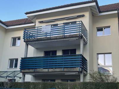 Erlinsbach Wohnungen, Erlinsbach Wohnung kaufen