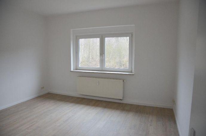 Sonnige, große 2-Raum-Wohnung in Plauen zu vermieten
