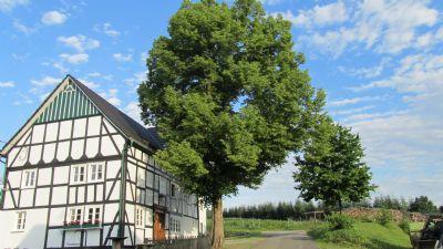 Zu Gast im Südsauerland - Ortmanns Eulennest - Gemütliche Herberge für Naturfreunde, Wanderer, Radfahrer und Biker