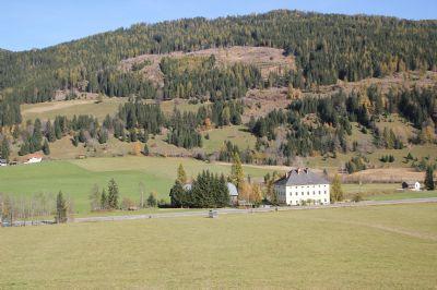 Gnesau Bauernhöfe, Landwirtschaft, Gnesau Forstwirtschaft